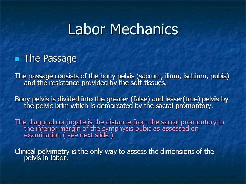 Labor Mechanics The Passage The Passage The passage consists of the bony pelvis (sacrum, ilium, ischium, pubis) and the resistance provided by the sof