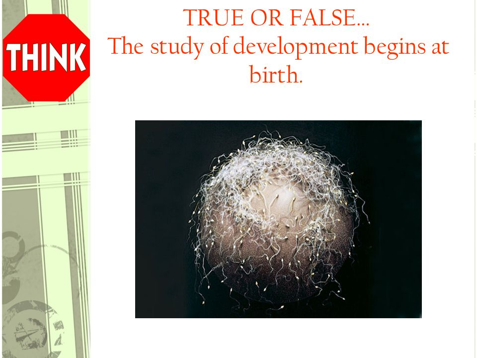 FALSE! The study of development begins at the moment of conception