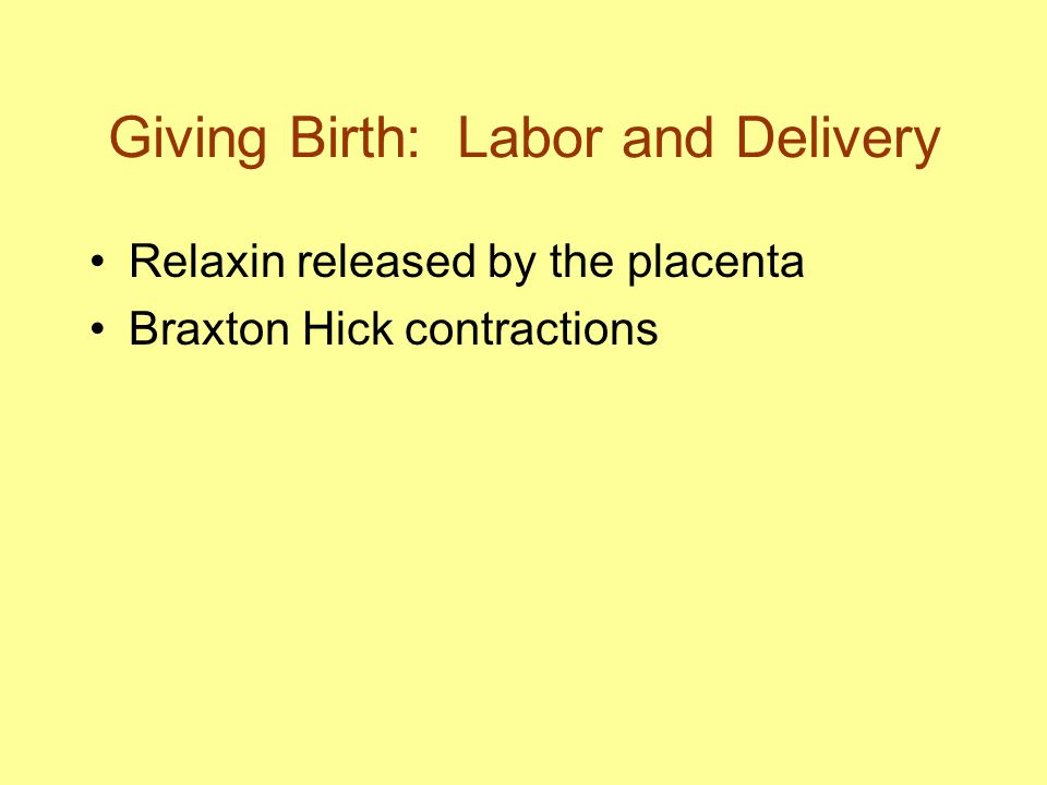 Giving Birth: Labor and Delivery Relaxin released by the placenta Braxton Hick contractions