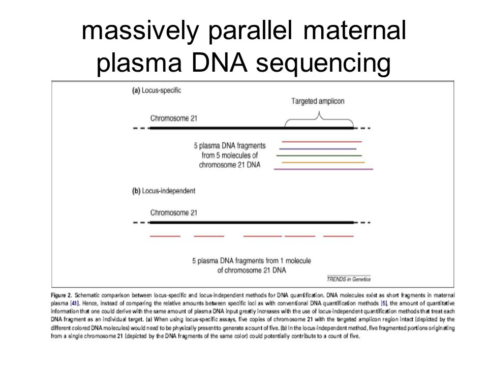 massively parallel maternal plasma DNA sequencing