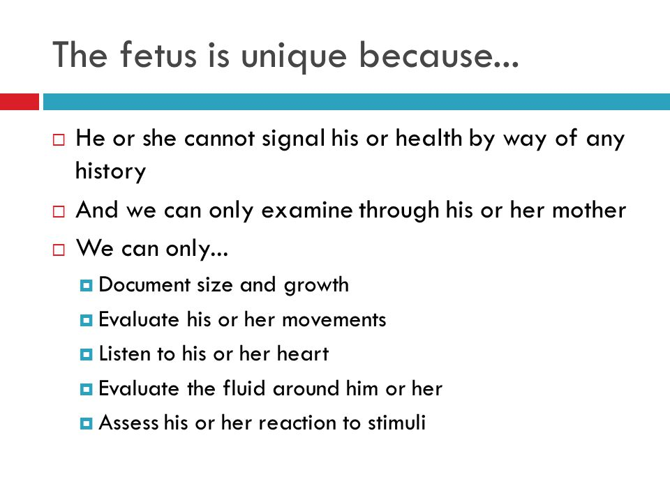 The fetus is unique because...