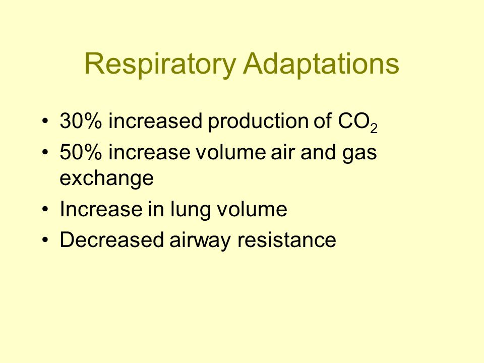 Respiratory Adaptations 30% increased production of CO 2 50% increase volume air and gas exchange Increase in lung volume Decreased airway resistance