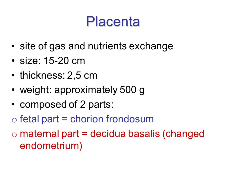 Placenta site of gas and nutrients exchange size: 15-20 cm thickness: 2,5 cm weight: approximately 500 g composed of 2 parts: o fetal part = chorion frondosum o maternal part = decidua basalis (changed endometrium)