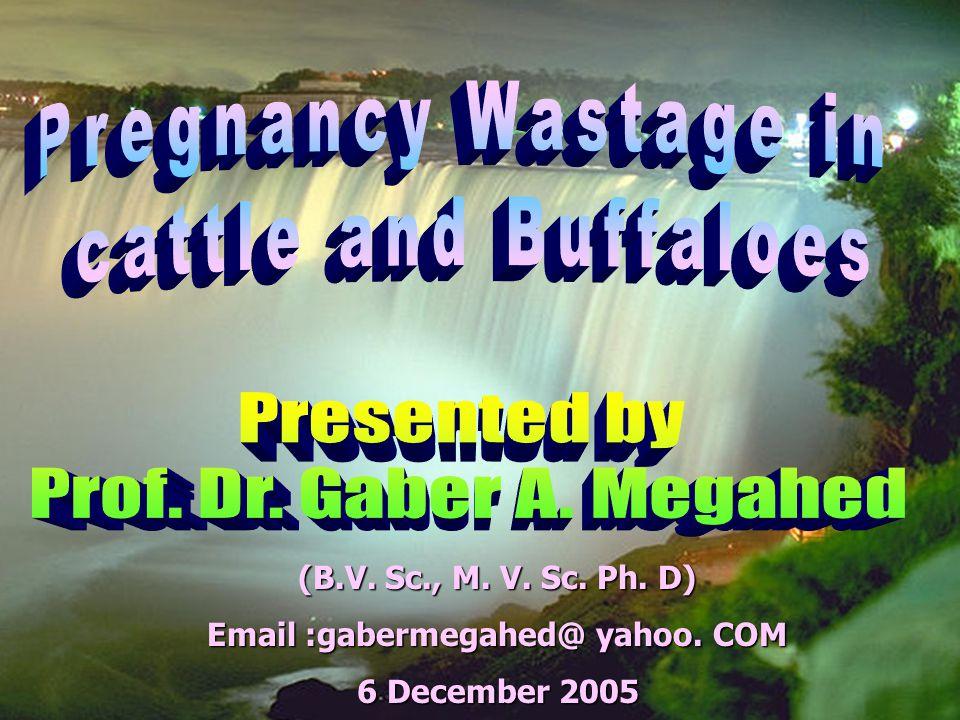 (B.V. Sc., M. V. Sc. Ph. D) Email :gabermegahed@ yahoo. COM December 2005 6