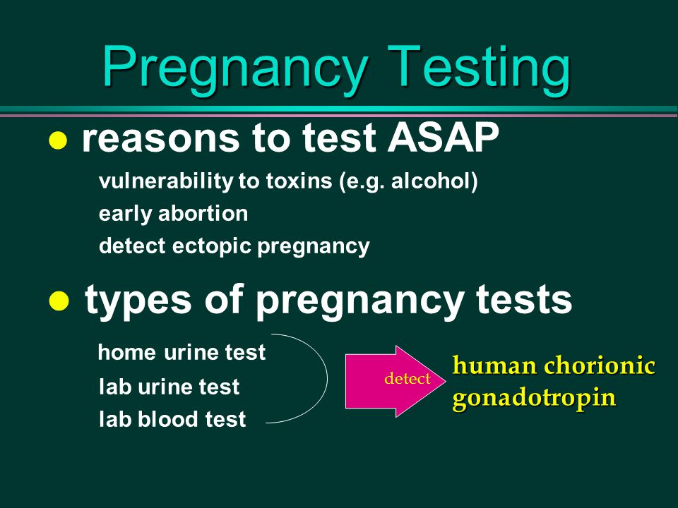 Pregnancy Testing reasons to test ASAP vulnerability to toxins (e.g.