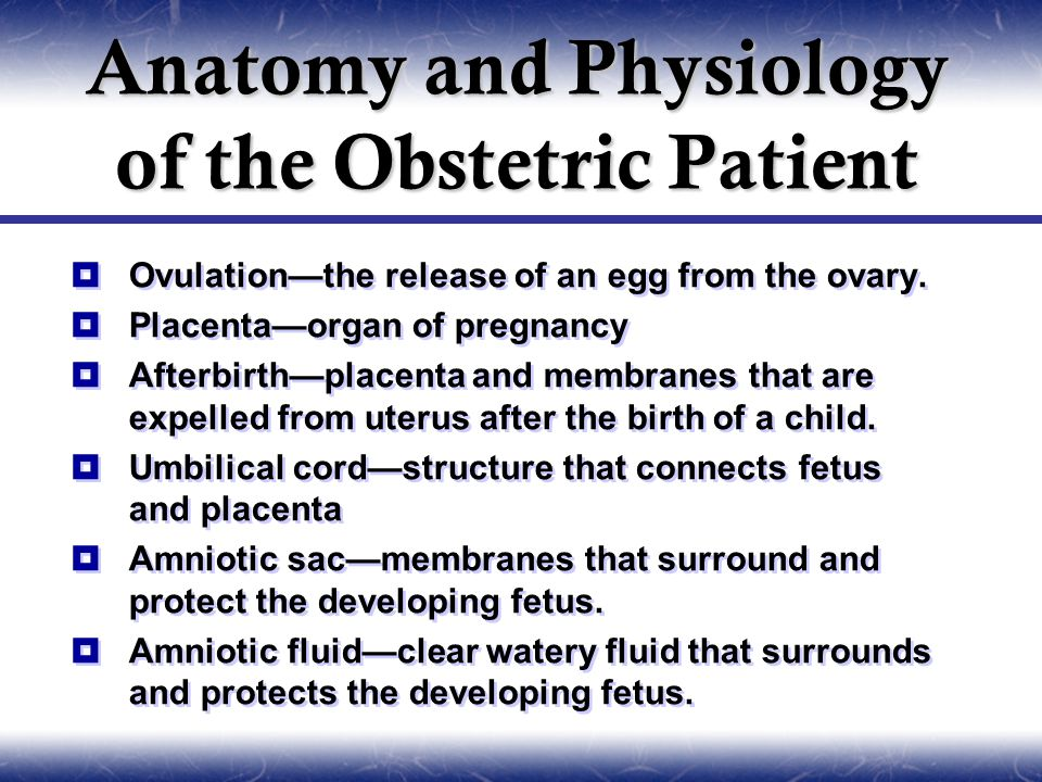 Anatomy and Physiology of the Obstetric Patient  Ovulation—the release of an egg from the ovary.  Placenta—organ of pregnancy  Afterbirth—placenta