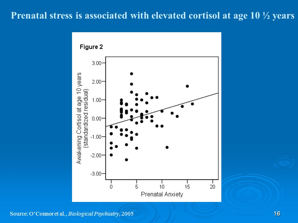 16 Source: O'Connor et al., Biological Psychiatry, 2005 Prenatal stress is associated with elevated cortisol at age 10 ½ years
