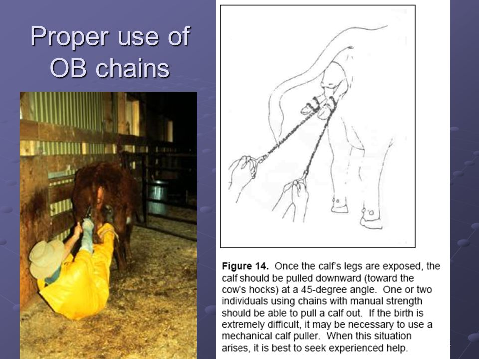 23 Proper use of OB chains