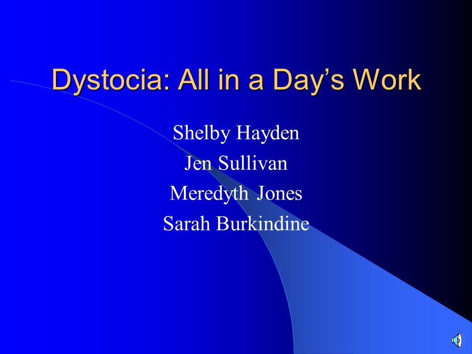 Dystocia: All in a Day's Work Shelby Hayden Jen Sullivan Meredyth Jones Sarah Burkindine