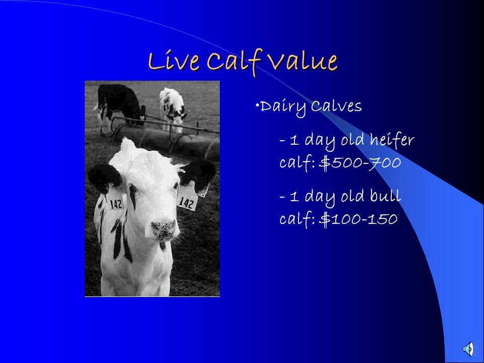 Live Calf Value Dairy Calves - 1 day old heifer calf: $500-700 - 1 day old bull calf: $100-150