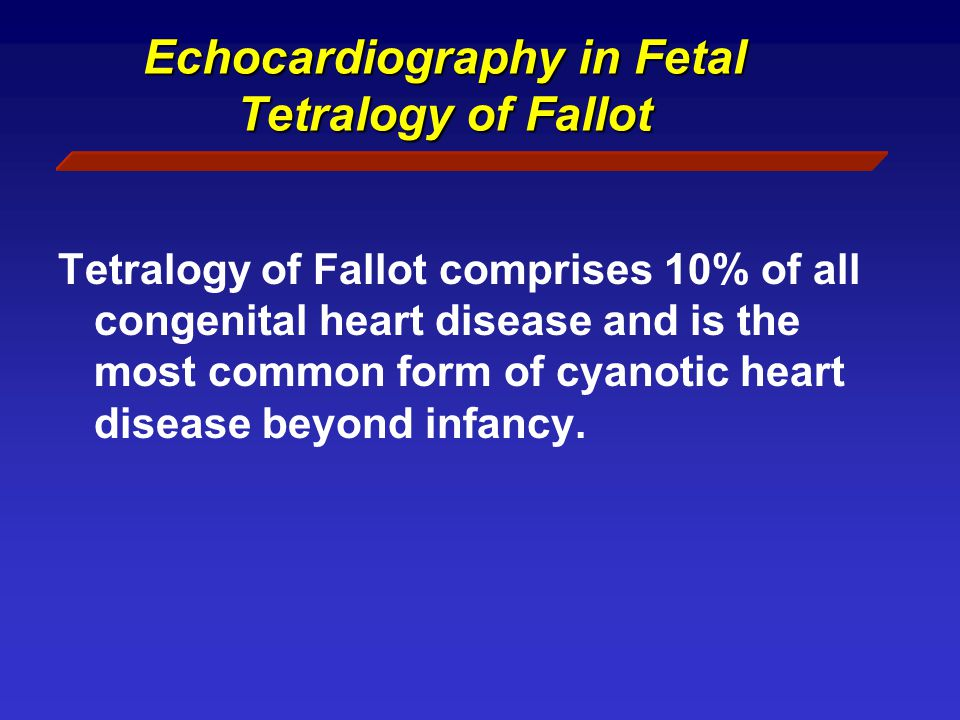 Echocardiography in Fetal Tetralogy of Fallot Tetralogy of Fallot comprises 10% of all congenital heart disease and is the most common form of cyanotic heart disease beyond infancy.