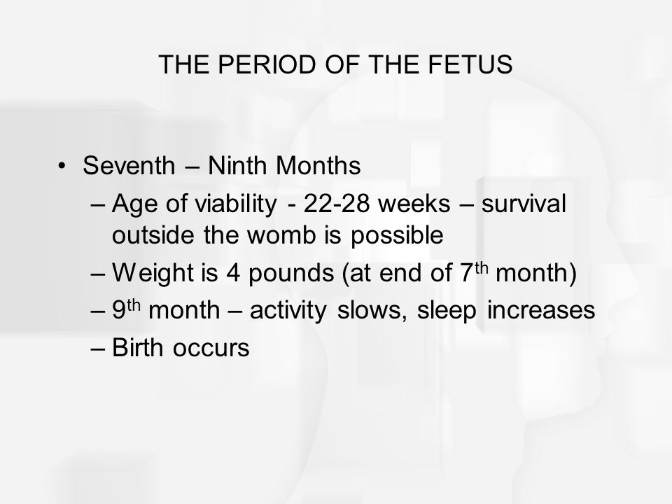 THE PERIOD OF THE FETUS Seventh – Ninth Months –Age of viability - 22-28 weeks – survival outside the womb is possible –Weight is 4 pounds (at end of 7 th month) –9 th month – activity slows, sleep increases –Birth occurs