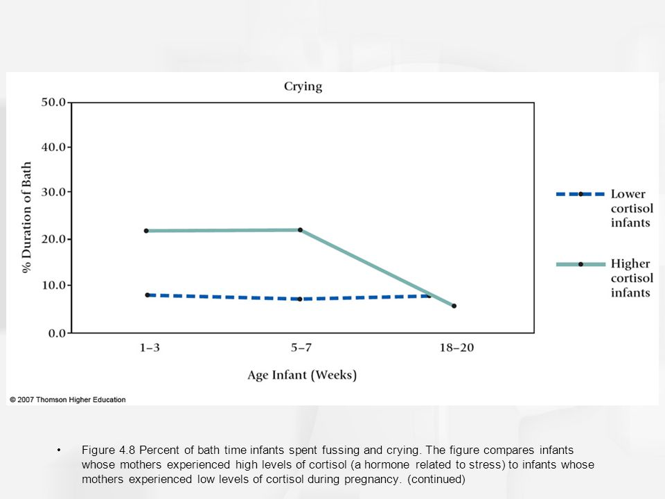 Figure 4.8 Percent of bath time infants spent fussing and crying. The figure compares infants whose mothers experienced high levels of cortisol (a hor