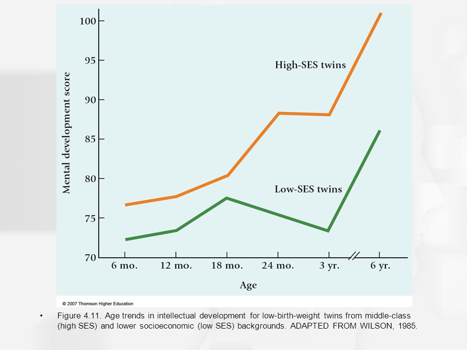 Figure 4.11. Age trends in intellectual development for low-birth-weight twins from middle-class (high SES) and lower socioeconomic (low SES) backgrou