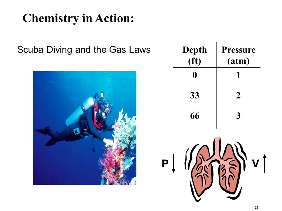 15 Chemistry in Action: Scuba Diving and the Gas Laws PV Depth (ft) Pressure (atm) 01 332 663