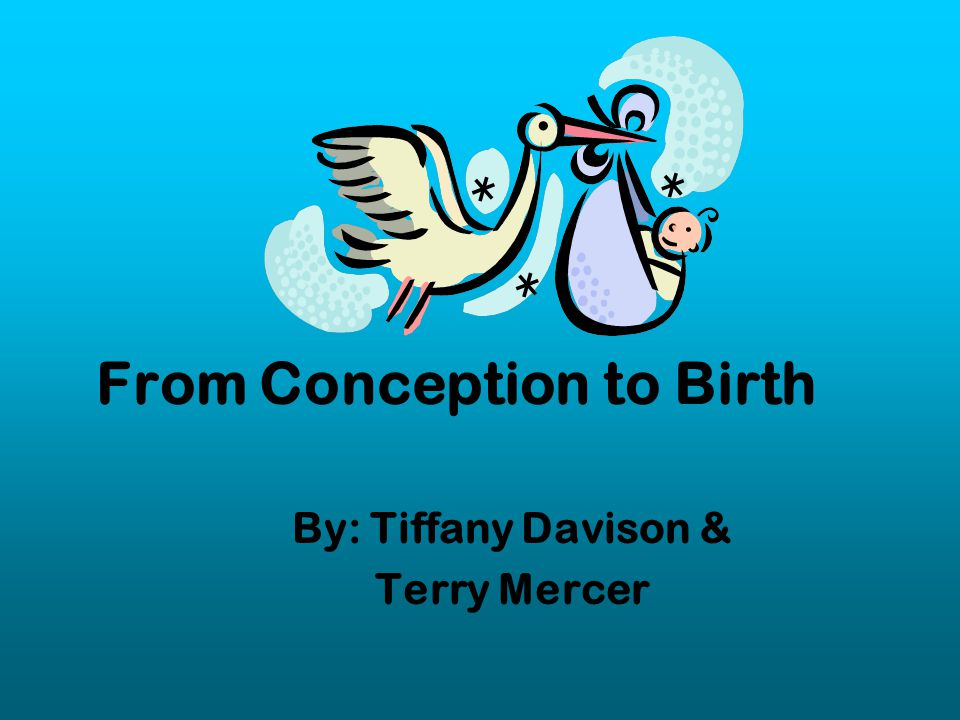 Trimesters of Pregnancy Pregnancy is divided into trimesters.