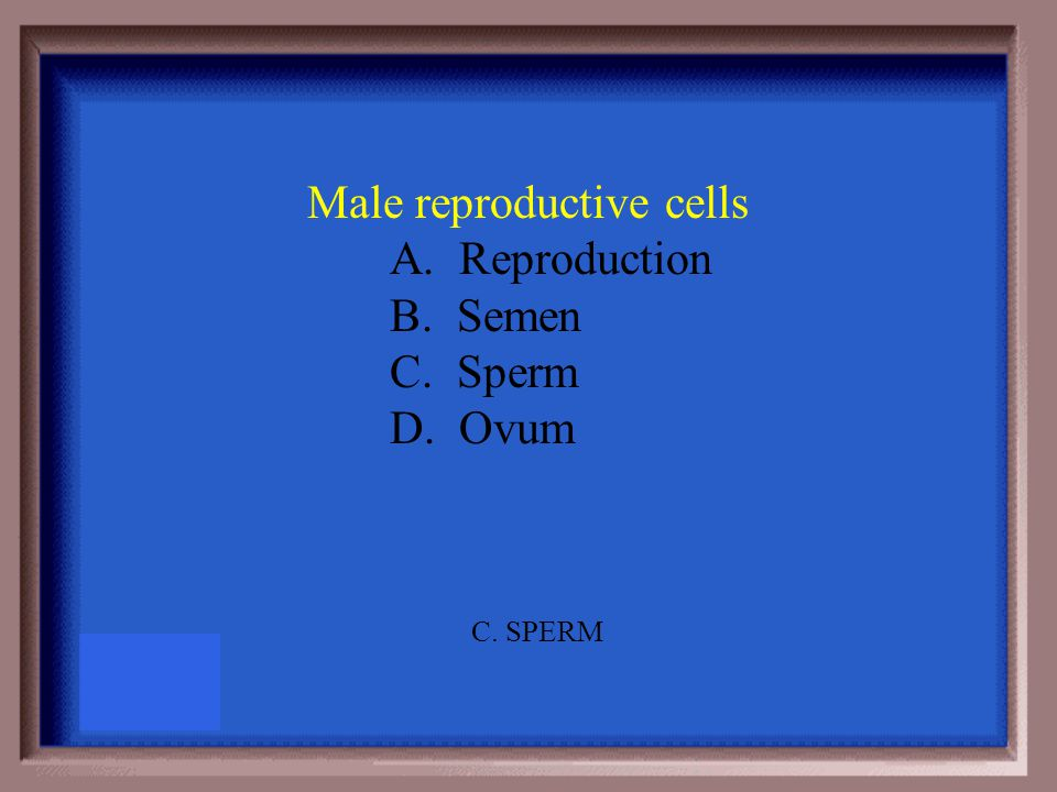 You must label 6 parts of the female reproductive system