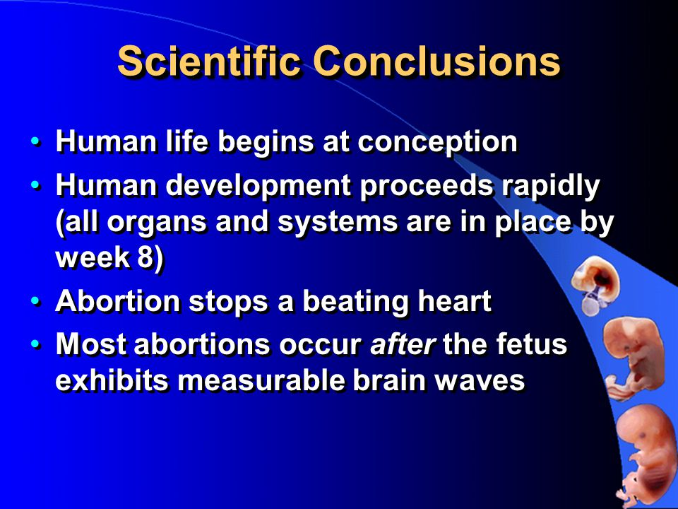 Scientific Conclusions Human life begins at conception Human development proceeds rapidly (all organs and systems are in place by week 8) Abortion stops a beating heart Most abortions occur after the fetus exhibits measurable brain waves Human life begins at conception Human development proceeds rapidly (all organs and systems are in place by week 8) Abortion stops a beating heart Most abortions occur after the fetus exhibits measurable brain waves
