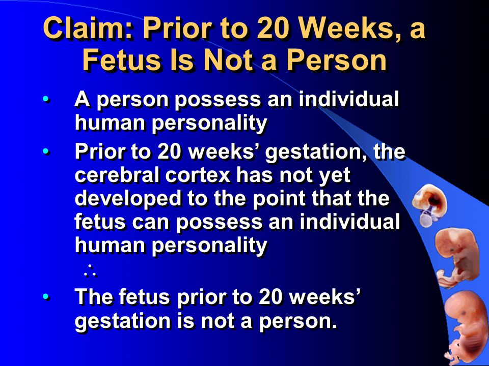 Claim: Prior to 20 Weeks, a Fetus Is Not a Person A person possess an individual human personality Prior to 20 weeks' gestation, the cerebral cortex has not yet developed to the point that the fetus can possess an individual human personality  The fetus prior to 20 weeks' gestation is not a person.