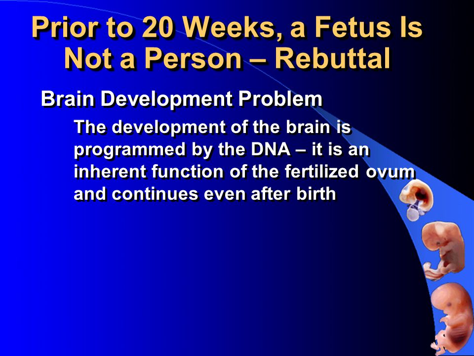 Prior to 20 Weeks, a Fetus Is Not a Person – Rebuttal Brain Development Problem The development of the brain is programmed by the DNA – it is an inherent function of the fertilized ovum and continues even after birth Brain Development Problem The development of the brain is programmed by the DNA – it is an inherent function of the fertilized ovum and continues even after birth