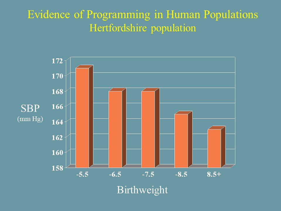 Evidence of Programming in Human Populations Hertfordshire population Birthweight SBP (mm Hg)