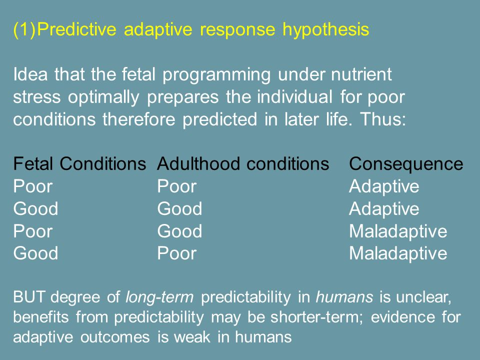 (1)Predictive adaptive response hypothesis Idea that the fetal programming under nutrient stress optimally prepares the individual for poor conditions therefore predicted in later life.