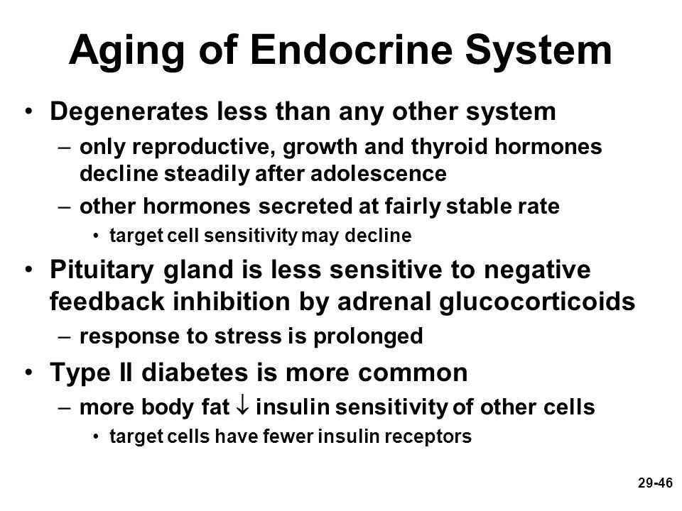 29-46 Aging of Endocrine System Degenerates less than any other system –only reproductive, growth and thyroid hormones decline steadily after adolesce