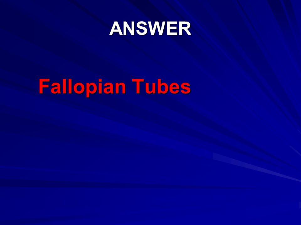 ANSWER Fallopian Tubes