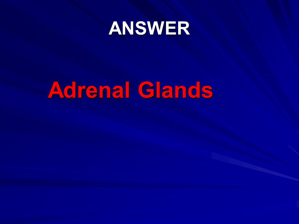 ANSWER Adrenal Glands
