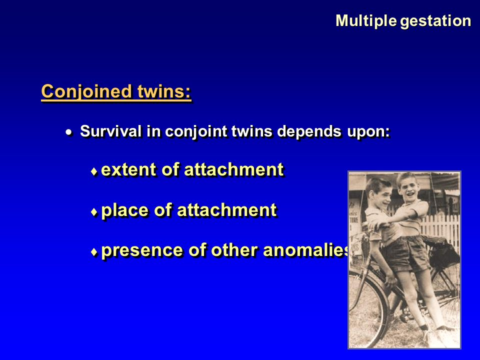 Multiple gestation Conjoined twins:  Survival in conjoint twins depends upon:  extent of attachment  place of attachment  presence of other anomal
