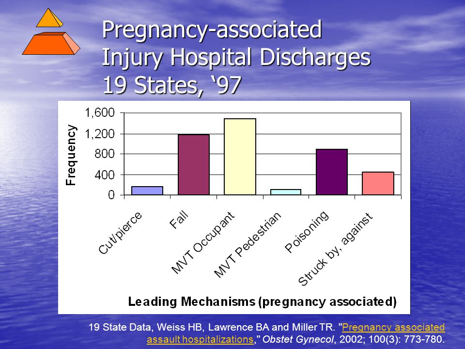 Pregnancy-associated Injury Hospital Discharges 19 States, '97 19 State Data, Weiss HB, Lawrence BA and Miller TR.