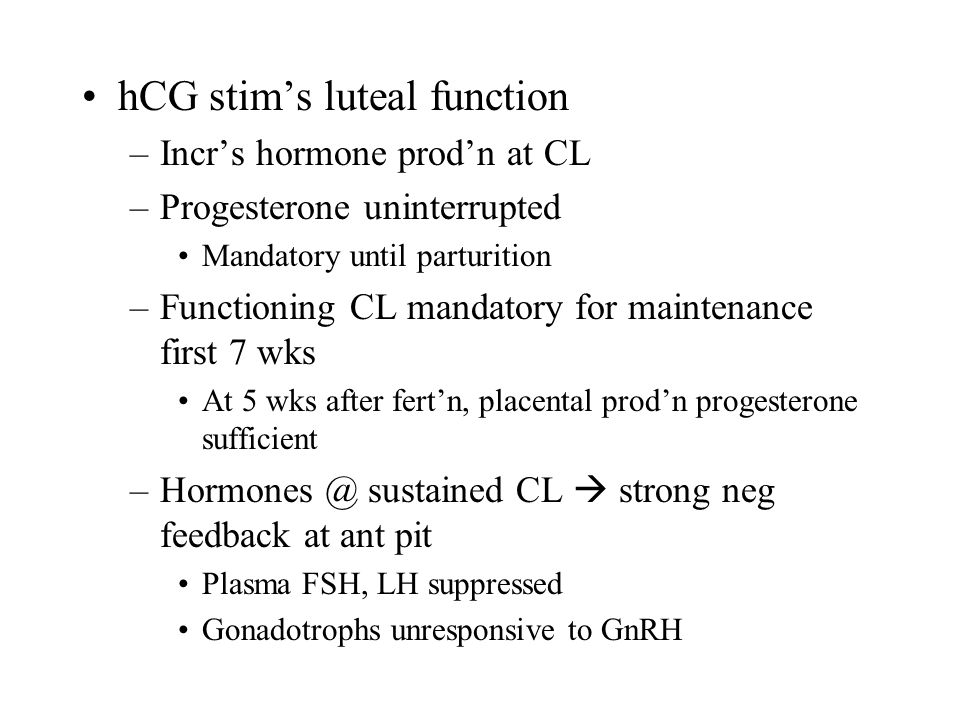 hCG stim's luteal function –Incr's hormone prod'n at CL –Progesterone uninterrupted Mandatory until parturition –Functioning CL mandatory for maintena