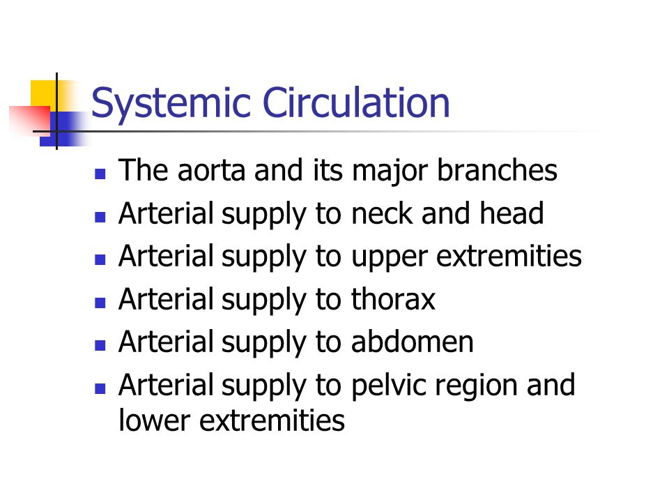 Systemic Circulation The aorta and its major branches Arterial supply to neck and head Arterial supply to upper extremities Arterial supply to thorax