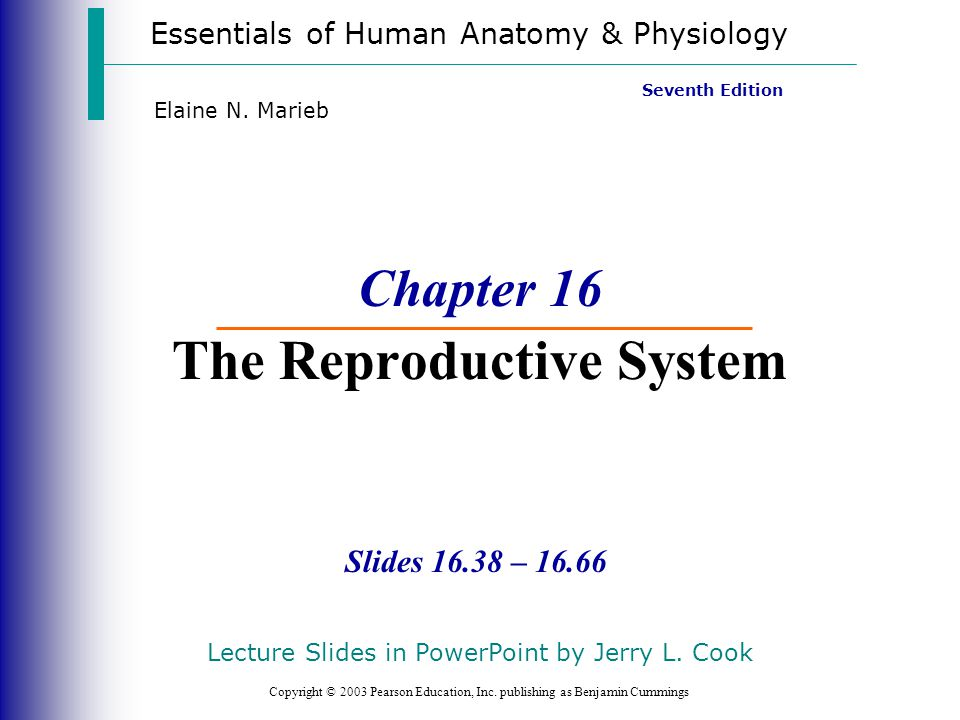 Developmental Aspects of the Reproductive System Slide 16.64a Copyright © 2003 Pearson Education, Inc.