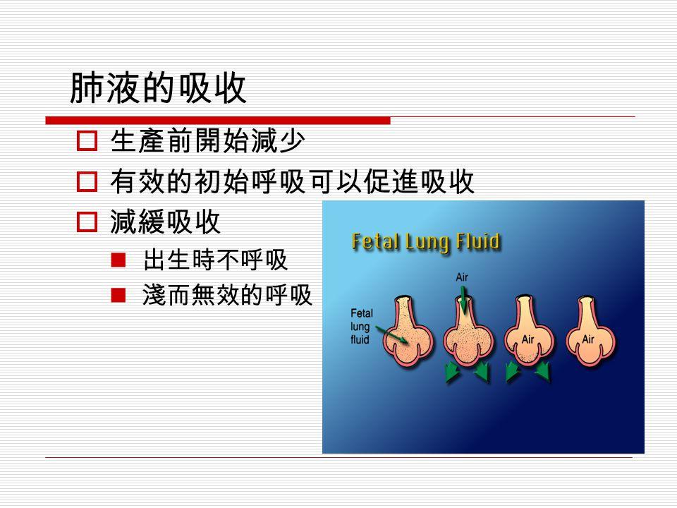 肺液的吸收  生產前開始減少  有效的初始呼吸可以促進吸收  減緩吸收 出生時不呼吸 淺而無效的呼吸