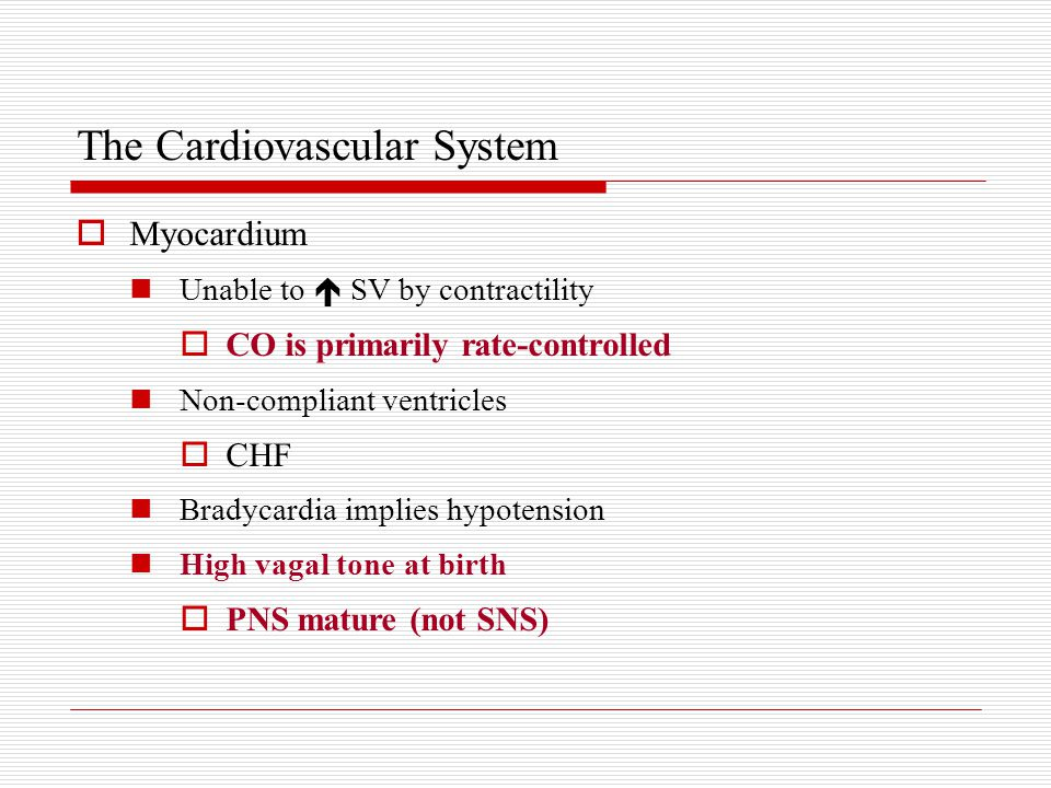  Myocardium Unable to  SV by contractility  CO is primarily rate-controlled Non-compliant ventricles  CHF Bradycardia implies hypotension High vagal tone at birth  PNS mature (not SNS)