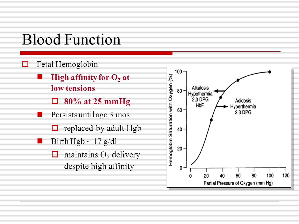Blood Function  Fetal Hemoglobin High affinity for O 2 at low tensions  80% at 25 mmHg Persists until age 3 mos  replaced by adult Hgb Birth Hgb ~ 17 g/dl  maintains O 2 delivery despite high affinity
