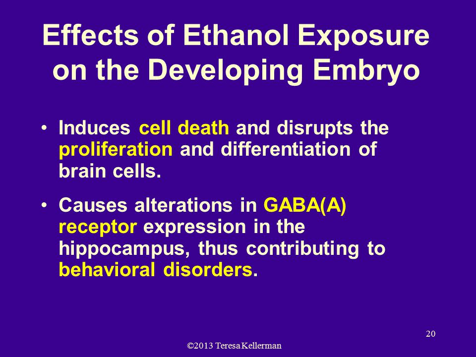 ©2013 Teresa Kellerman 20 Effects of Ethanol Exposure on the Developing Embryo Induces cell death and disrupts the proliferation and differentiation of brain cells.