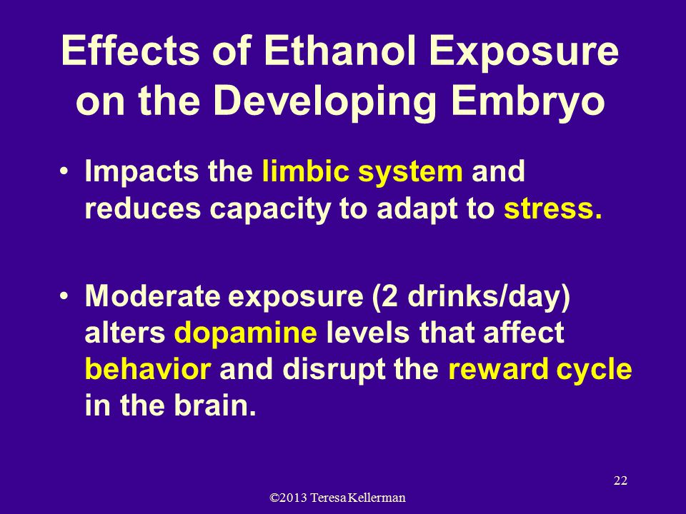 ©2013 Teresa Kellerman 22 Effects of Ethanol Exposure on the Developing Embryo Impacts the limbic system and reduces capacity to adapt to stress.