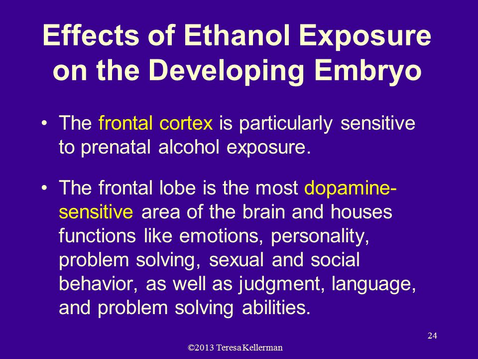©2013 Teresa Kellerman 24 Effects of Ethanol Exposure on the Developing Embryo The frontal cortex is particularly sensitive to prenatal alcohol exposu