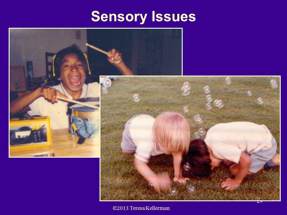 ©2013 Teresa Kellerman 29 Sensory Issues