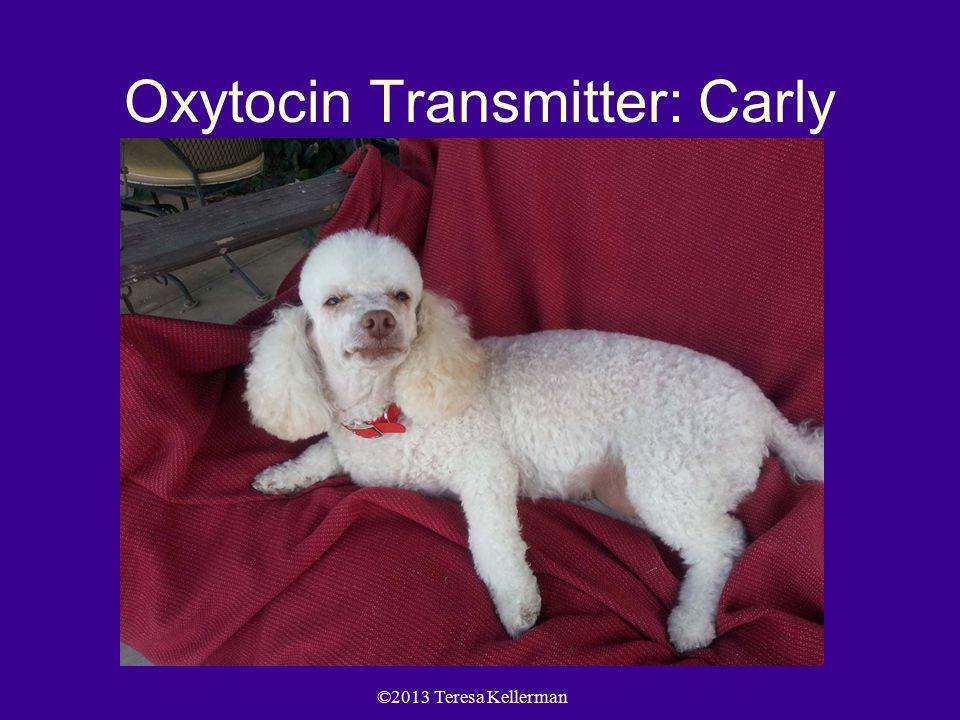 ©2013 Teresa Kellerman Oxytocin Transmitter: Carly