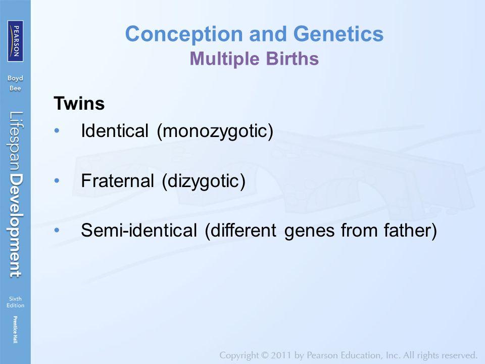 Prenatal Behavior Introducing the Amazing Fetus.