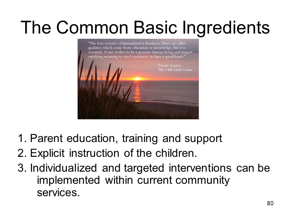 80 The Common Basic Ingredients 1. Parent education, training and support 2.