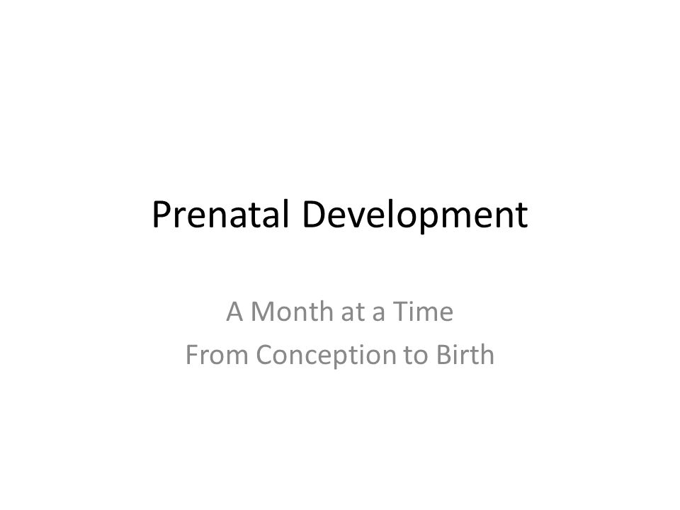 Month 8 Fetus may react to noises with a jerking actions Fetus has moved to head down position, but can turn back to bottom down Bones are fully developed but soft and pliable Rapid increase in the amount of body fat( ½ lb.