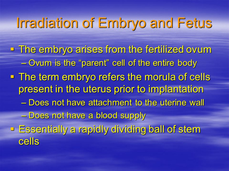 Irradiation of Embryo and Fetus  The embryo arises from the fertilized ovum –Ovum is the parent cell of the entire body  The term embryo refers the morula of cells present in the uterus prior to implantation –Does not have attachment to the uterine wall –Does not have a blood supply  Essentially a rapidly dividing ball of stem cells