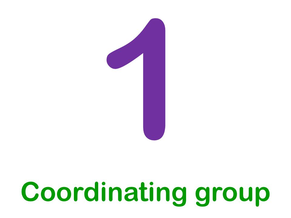 1 Coordinating group