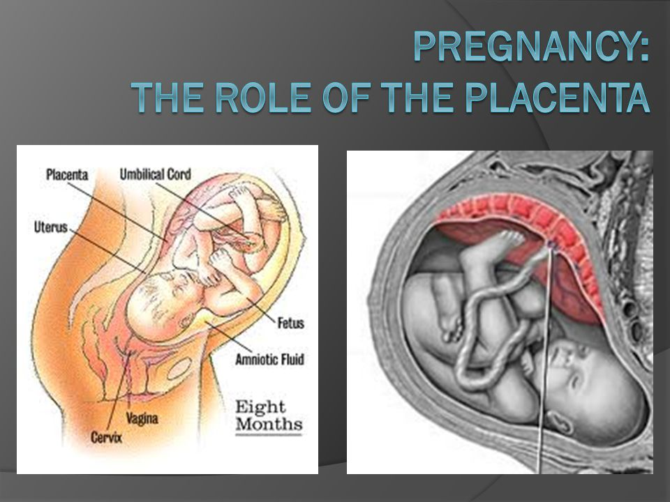 Ante-natal care and birth  Care before birth is vital for the health of the fetus while it is in the womb.
