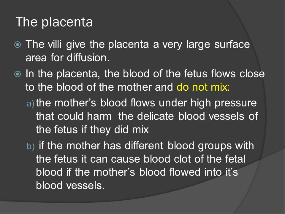 The placenta  The villi give the placenta a very large surface area for diffusion.