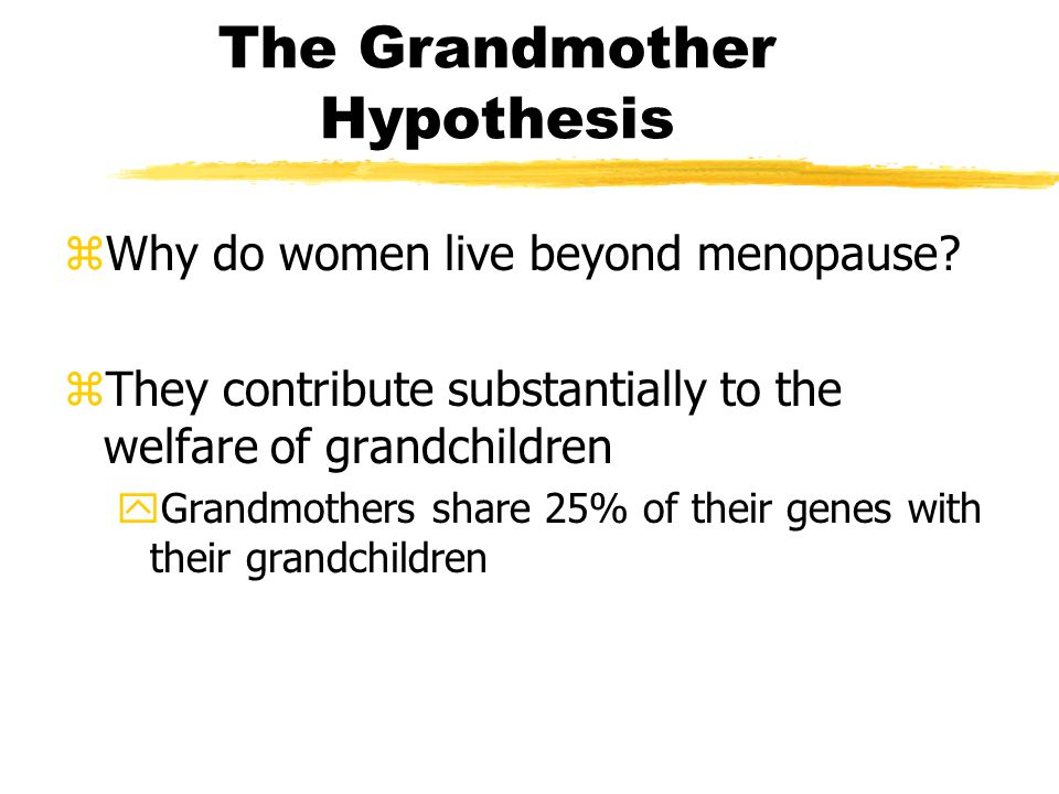 The Grandmother Hypothesis zWhy do women live beyond menopause.